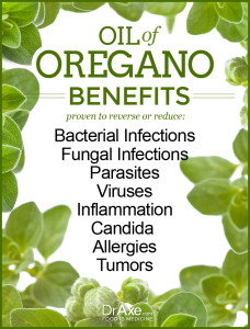 Oil-of-Oregano-Benefits
