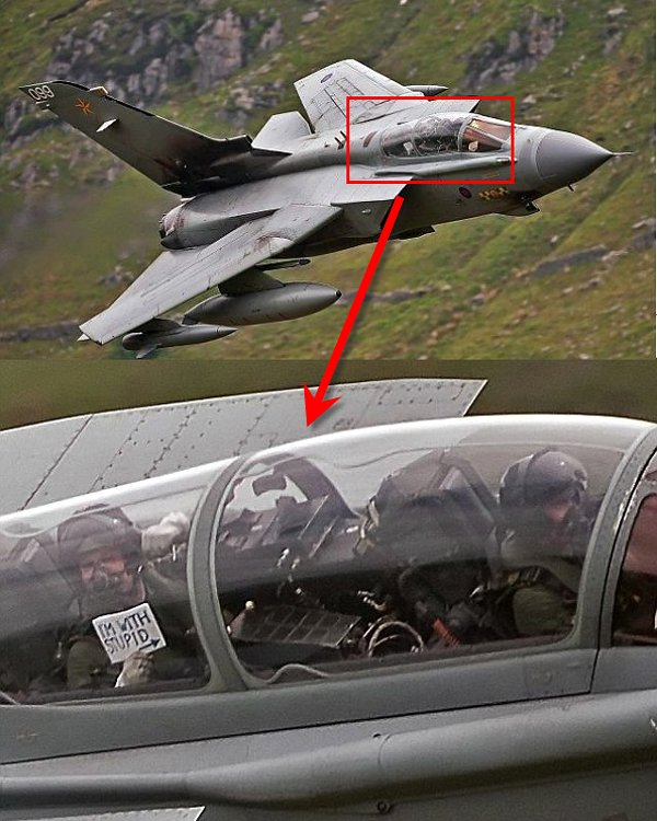 im-with-stupid-jet-fighter-plane-pilots-sign-enhance-and-zoom